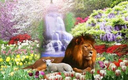 Nova terra para Israel